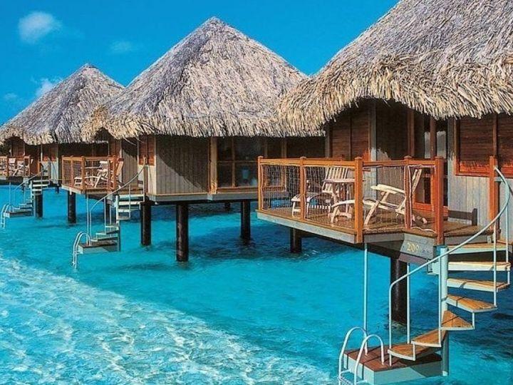 Tmx 1464220401475 Paradise Resort Small Best Honeymoon Resorts Punta Novato wedding travel