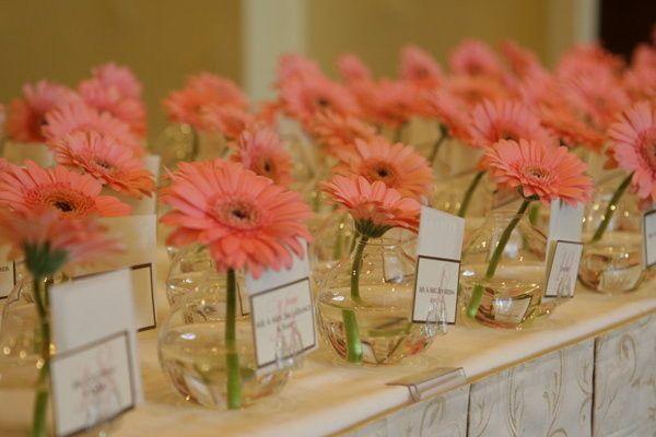 Tmx 1389286925074 Receptionflowers Frederick, MD wedding planner