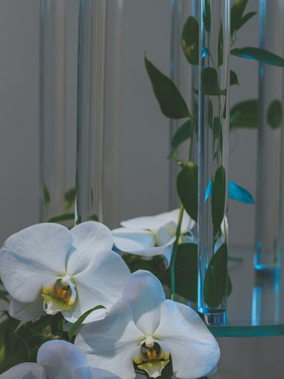 Glass Candelabra Orchid