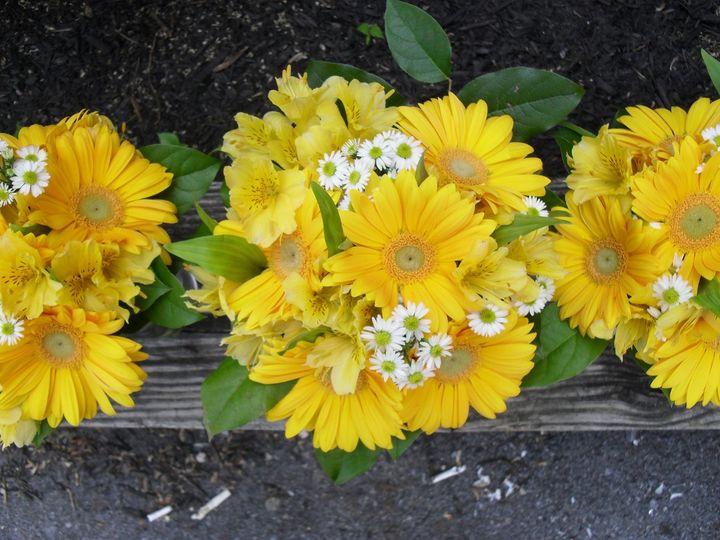 Tmx 1350523085084 Frantz5 Myerstown, PA wedding florist