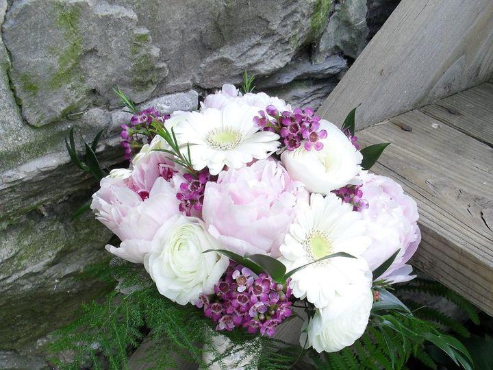 Tmx 1350523348936 Hess15 Myerstown, PA wedding florist