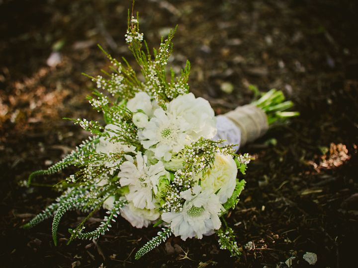 Tmx 1392136907221 Lodi 606 Saint Helena, CA wedding planner