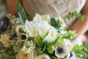 Loden Floral Design