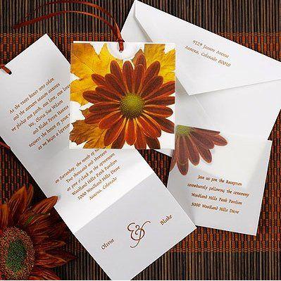 Tmx 1346942581500 CarlsonFalldaisy Port Orange, FL wedding invitation