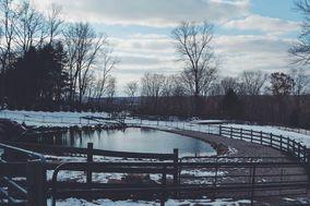 Nuzzo's Farm
