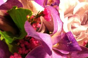 Kate's Blooms