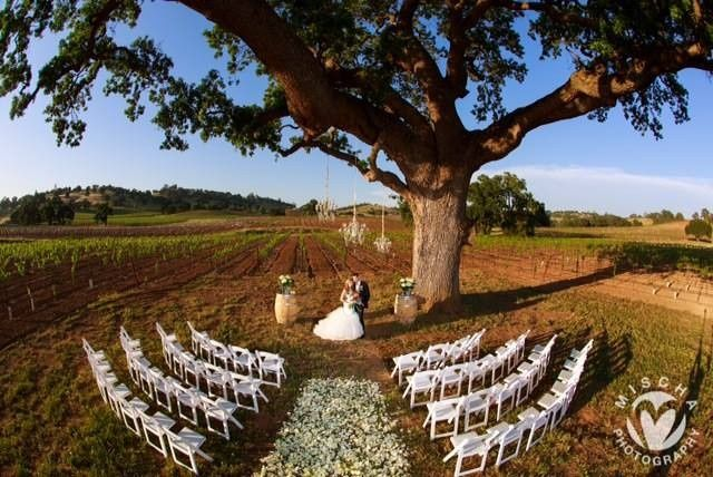 Use our white resin/wood padded chairs to make an elegant setting to remember (Rancho Victoria)