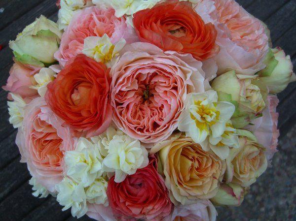Tmx 1205385542469 CIMG2207copy Sonoma, CA wedding florist