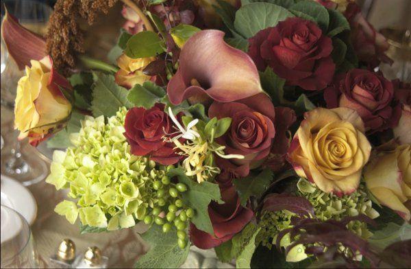 Tmx 1205386071571 AD014copy1 Sonoma, CA wedding florist