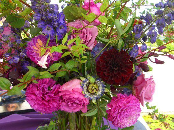 Tmx 1205386950939 CIMG1423copy Sonoma, CA wedding florist