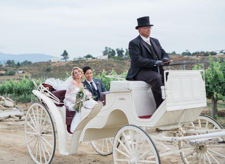 avensole bride in vines 51 1108133 158395008724171
