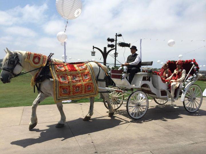 Baraat horse arrival