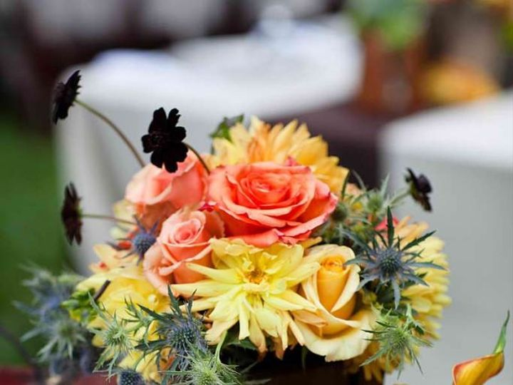 Tmx 1450218541812 Amyburke58 Berkeley, CA wedding catering