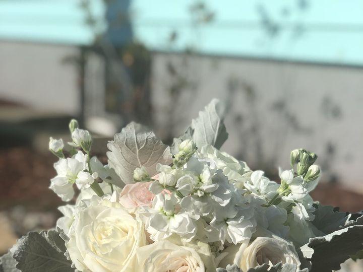 Tmx Img 5453 51 57233 Revere, MA wedding florist