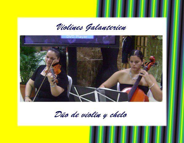 Violines Galanterien de PR