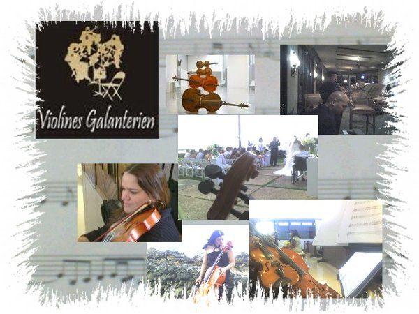 Violinist in Puerto Rico