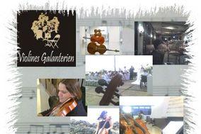 Violines Galanterien de Puerto Rico