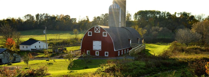 Exterior shot of the barn
