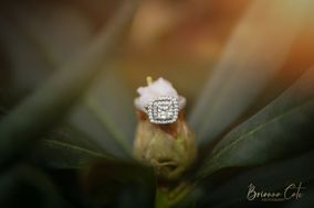 Brianna Cate Photography