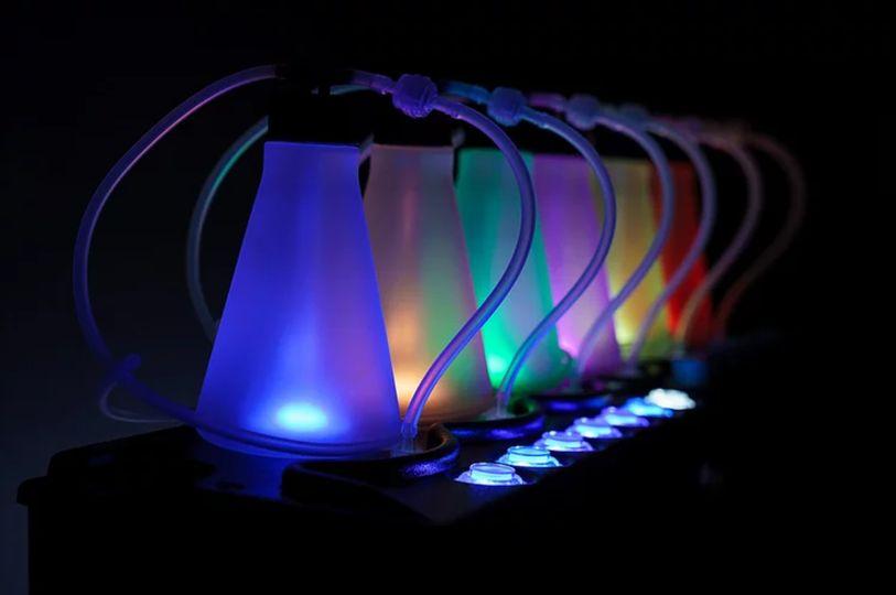 Lights of the oxygen bar