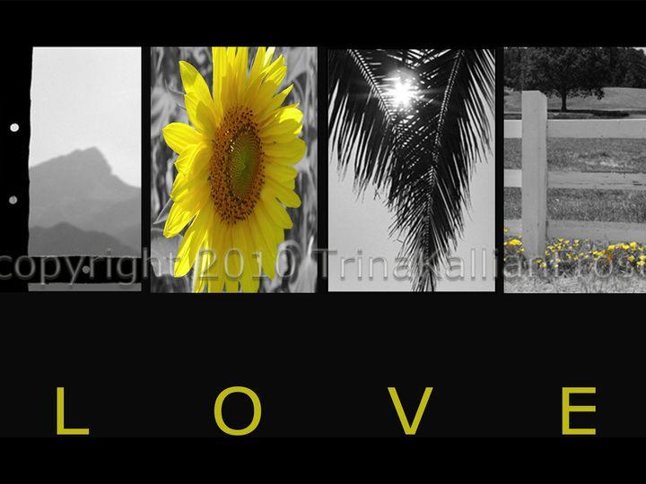 Tmx 1456069180816 Love04 Milwaukee wedding favor