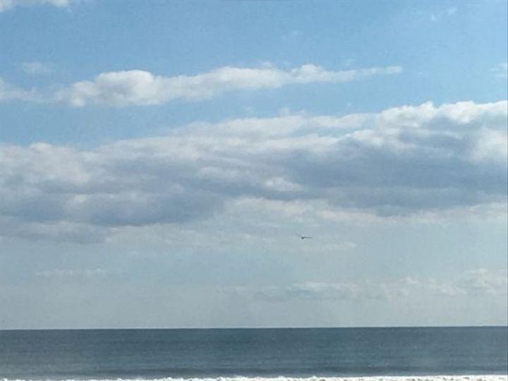 Tmx 1532065868 B8b1b9230d672e0a 1532065867 02600bb2d7a09ca0 1532065862236 1 3 Atlantic Beach, NY wedding venue