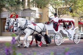 Downtown Horse And Carriage