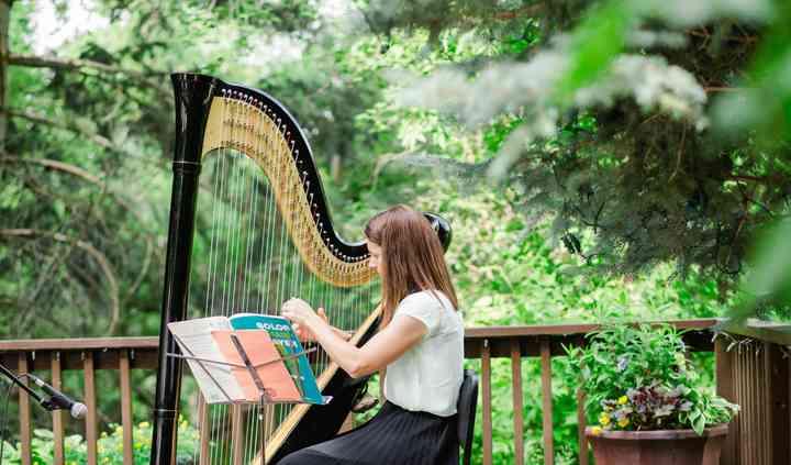 Emily Hinchey | Harpist