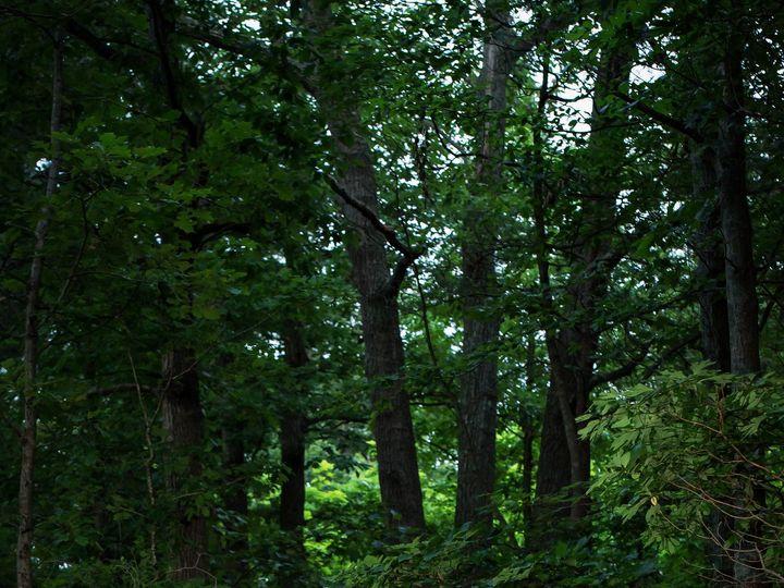 Tmx 1441127900988 Ambarmorenophotography 256 Voorhees, NJ wedding photography