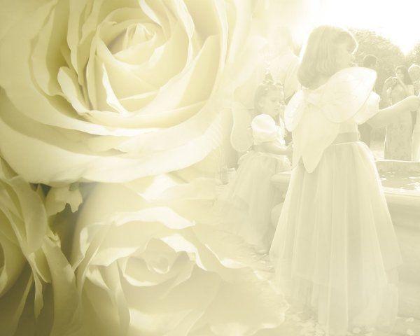 Wedding2008