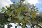 ReMarkable Floral image