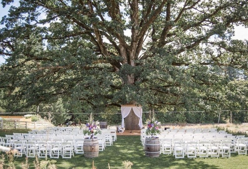 Meet Harold! He is the beloved old oak tree that we use for our outdoor ceremonies. The tree looks...