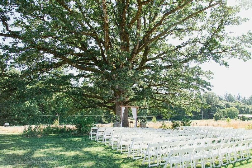 Another view of our outdoor ceremony space.