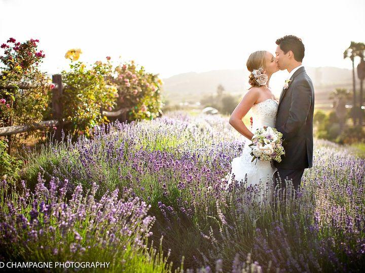 Tmx 20120525 3449copy1 51 161733 V2 Chesapeake, VA wedding photography