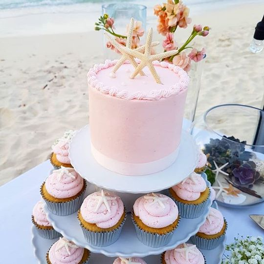 Simple cake with cupcakes