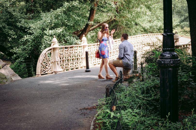 Central Park Proposal