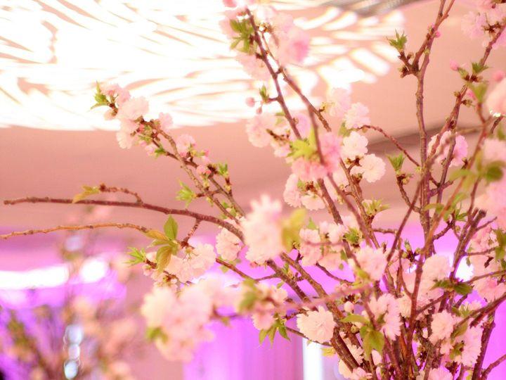 Tmx 1416539916294 001 Sanibel, Florida wedding florist