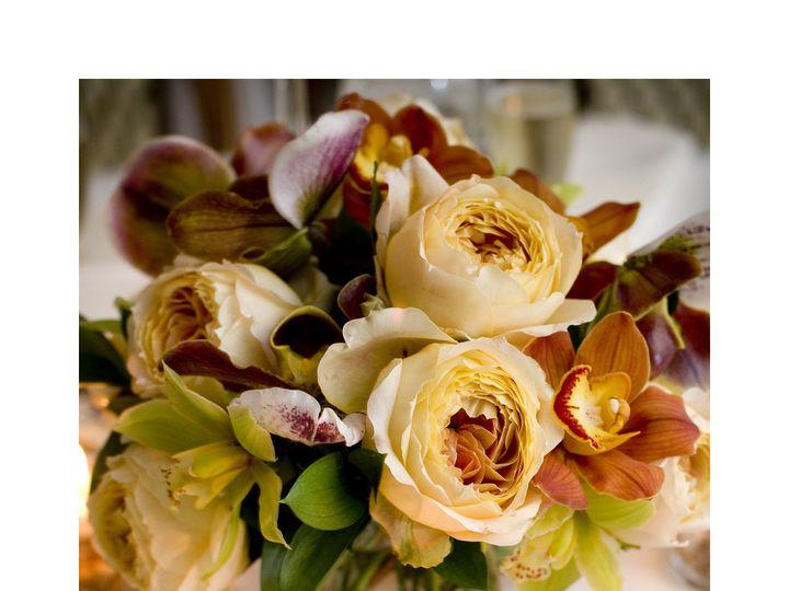 Tmx 1416540580263 ..5 Sanibel, Florida wedding florist