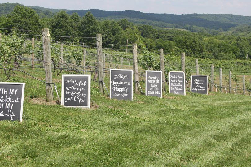 Ceremony in the vineyard