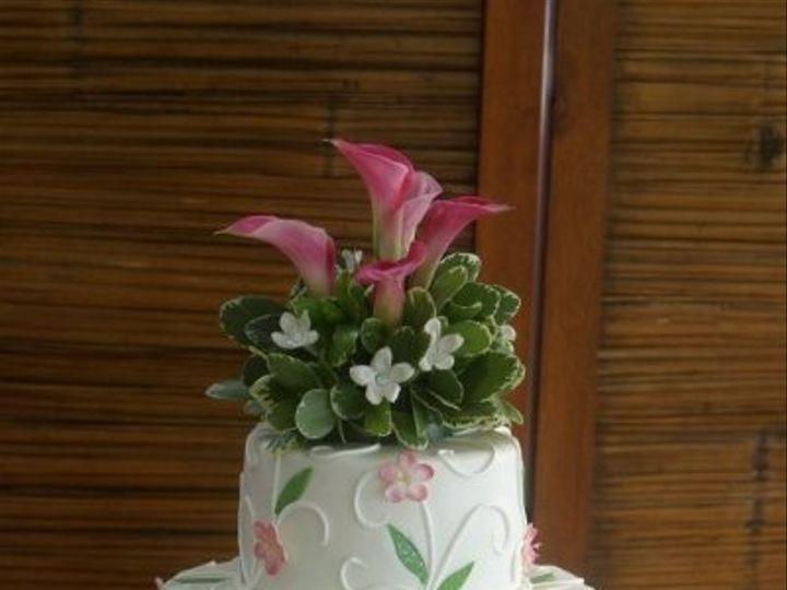 Tmx 1219880471280 Cherryblossomsw.greenleavessm Lancaster wedding cake