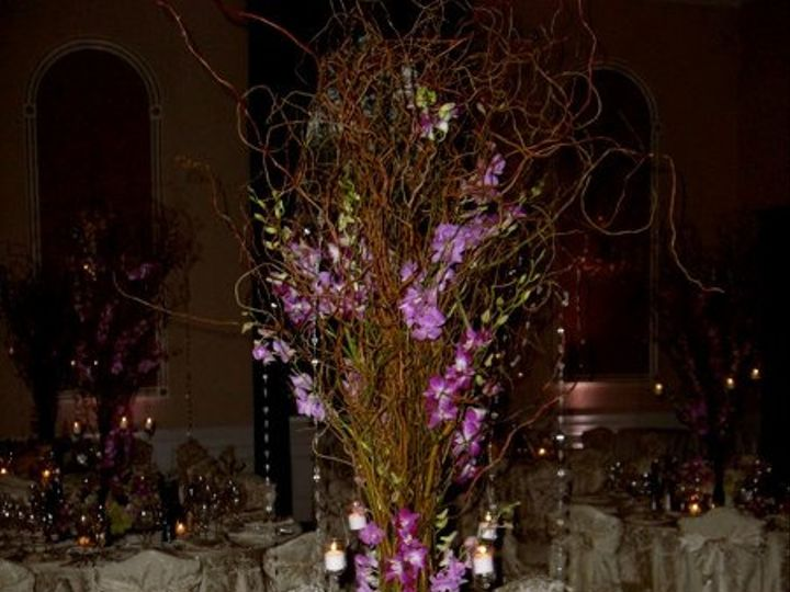 Tmx 1261175673254 Dendroandbranchescp Suffern, NY wedding florist