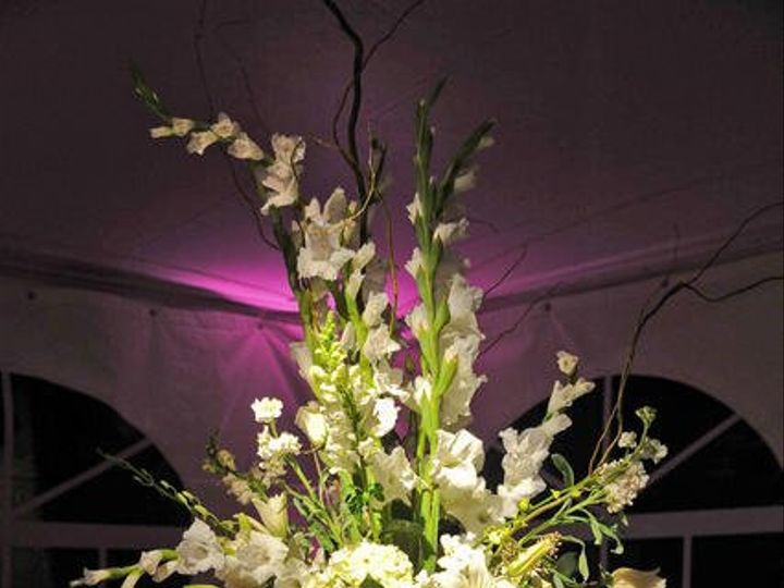 Tmx 1349994734935 Orlandolightingforweddingcenterpiecepinspot Orlando, FL wedding dj