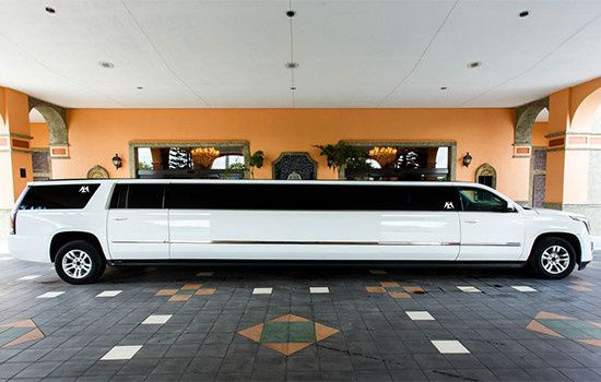 The whole limo