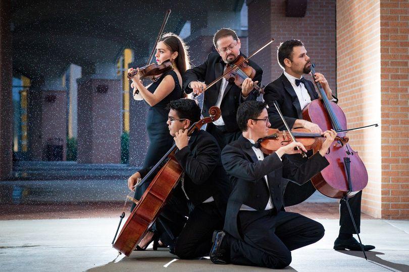 viol consort string0035 51 595043 1565055241
