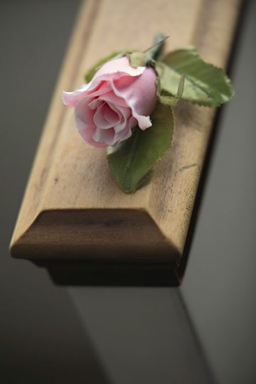 Pink Rose @ Engaged Foto