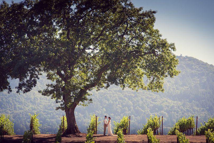 wedding photography sonoma valley 103