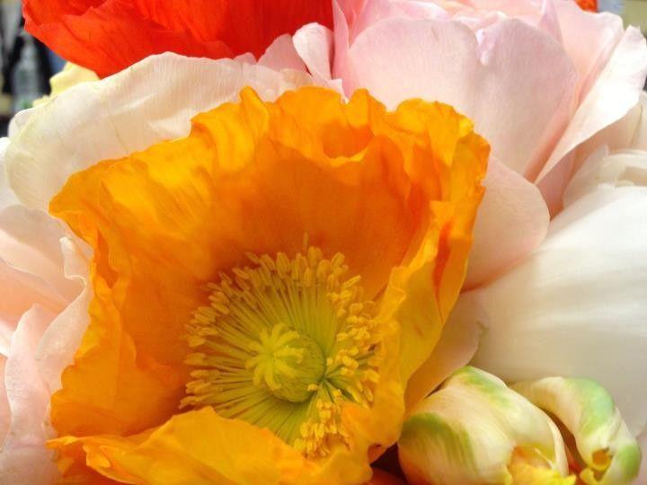 Tmx 1396472367780 5594846393521994142591133712089 Astoria wedding florist