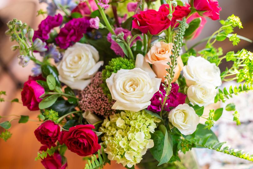 Vibrant blooms