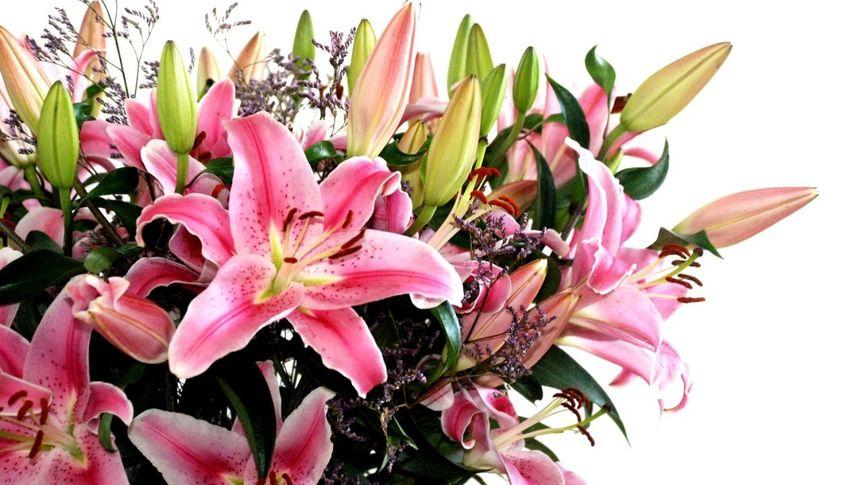 bouquet of flowers wallpaper