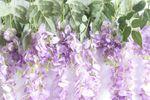 DES Artificial Flowers image